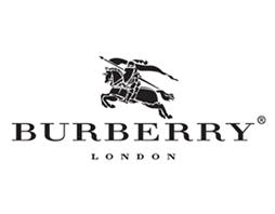 Burberry Designer Frames