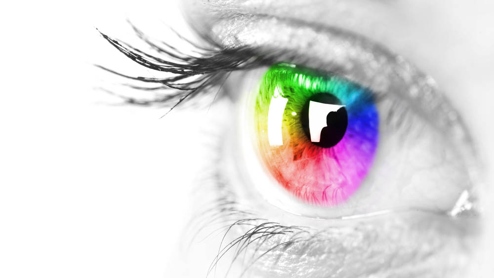 What Is Color Blindness and the Different Types?